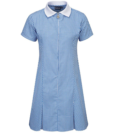 ACORNS PRIMARY SUMMER DRESS